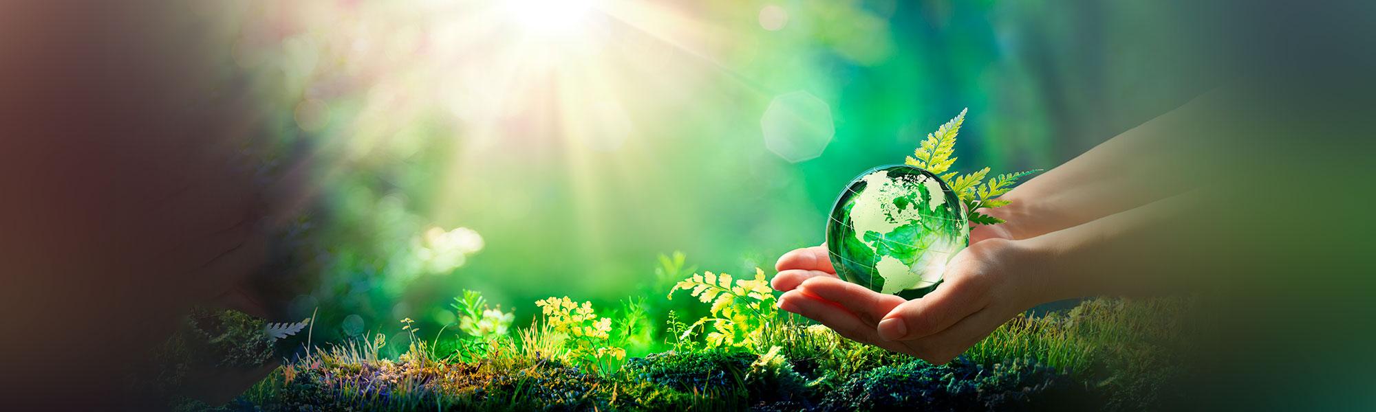 Picture | Quantum New Energy | ESG, Energy Transition & Carbon Reduction Solutions