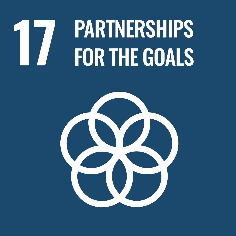 Picture | UN Sustainable Development Global Goals | Partnership | Quantum New Energy